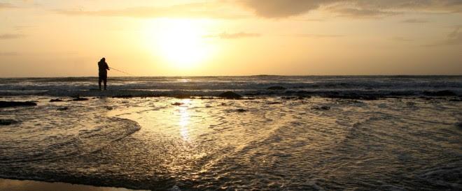 w660_412234_sunsetshell3.jpg