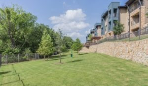 gallery-large-yard-at-apartments-in-dallas