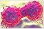 연구에 따르면 면역 세포가 종양 발달을 제한하는 방법