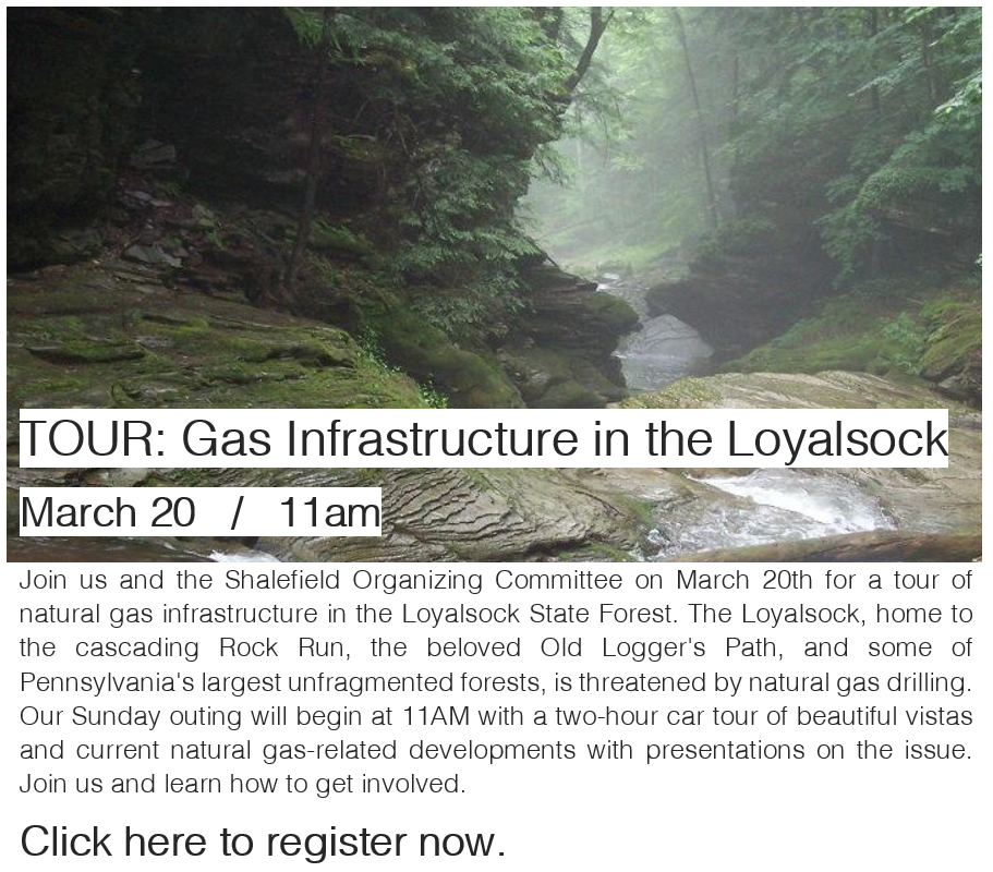 Join us in the Loyalsock!
