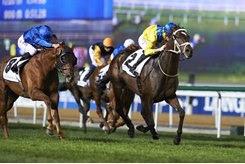 Light the Lights wins the Mubadala Global Trophy Handicap at Meydan