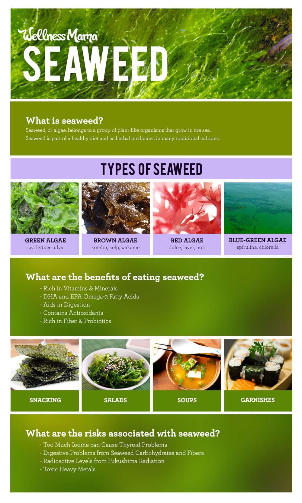 WM-Seaweed-InfoGraph