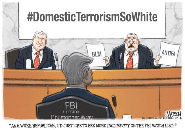 FBI, FEDERAL BUREAU INVESTIGATIONS, SENATE COMMITTEE HEARING, DIRECTOR, WRAY, DOMESTIC TERRORISM, WATCH LIST, WOKE, REPUBLICAN