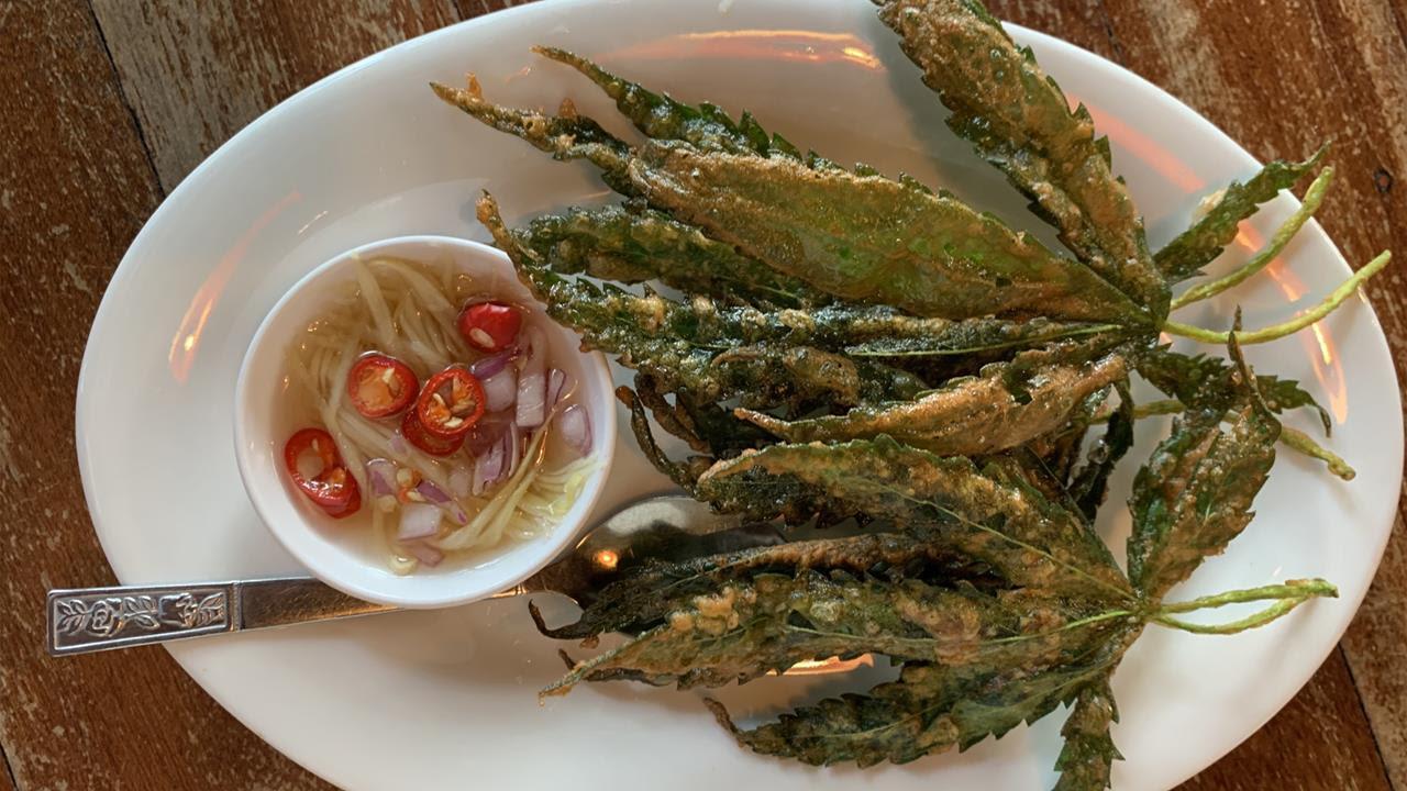 Cannabis leaves fried tempura style at Baan Lao Ruang restaurant in Thailand.