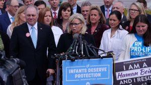Liz Cheney BACKSTABS GOP In Sickening Act...