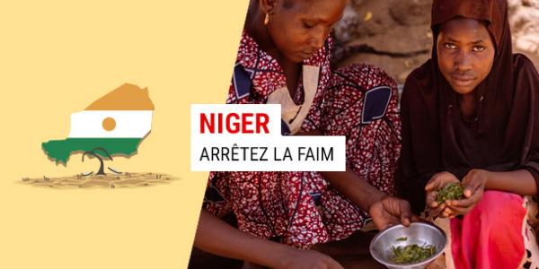 Arrêtez la faim au Niger