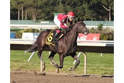 Pirate's Punch surges down the lane to win the Salvator Mile Stakes at Monmouth Park