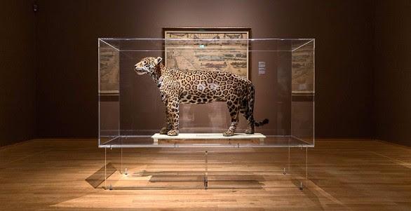 Met Freek Vonk door het Rijksmuseum
