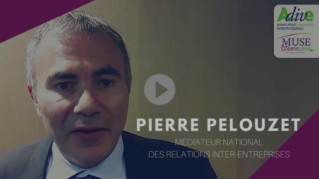 Pierre Pelouzet, Médiateur national des relations inter-entreprises