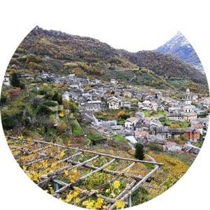 Piemonte: la buona legge che sostiene le piccole imprese agricole