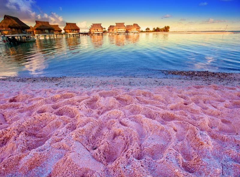 Tiny pink shells give this beach its unique color.
