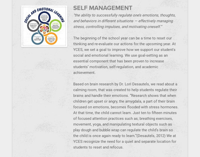 """SELF MANAGEMENT                         """"the ability to successfully regulate one's emotions, thoughts, and behaviors in..."""