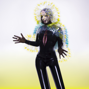 Björk - Vulnicura (Official Album Cover).png