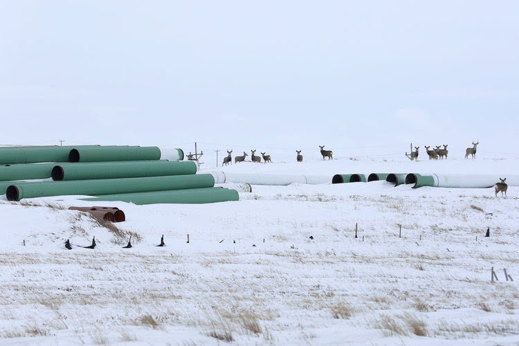 A depot used to store pipes for the Keystone XL oil pipeline in Gascoyne, North Dakota. (Terray Sylvester/Reuters)</p>