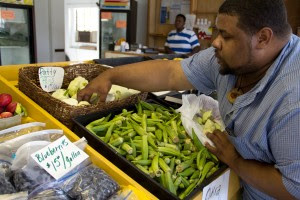 Cymlings and Okra in Mississippi