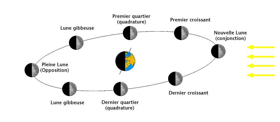 Diagram of the different phases of the Moon. © Wikipedia, CC by-sa 3.0