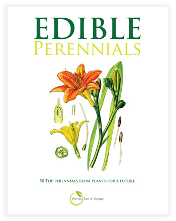 Edible Perennial Plants Book. Woodland/Forest/Organic Gardening