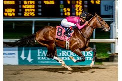 War of Will wins the Lecomte Stakes by four lengths at Fair Grounds