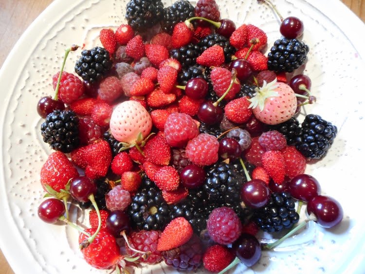 Mixed berries - Nature's precious midsummer jewels.