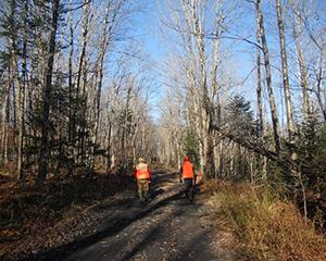 Hunting and Land Stewardship in Vermont: Webinar and Discussion