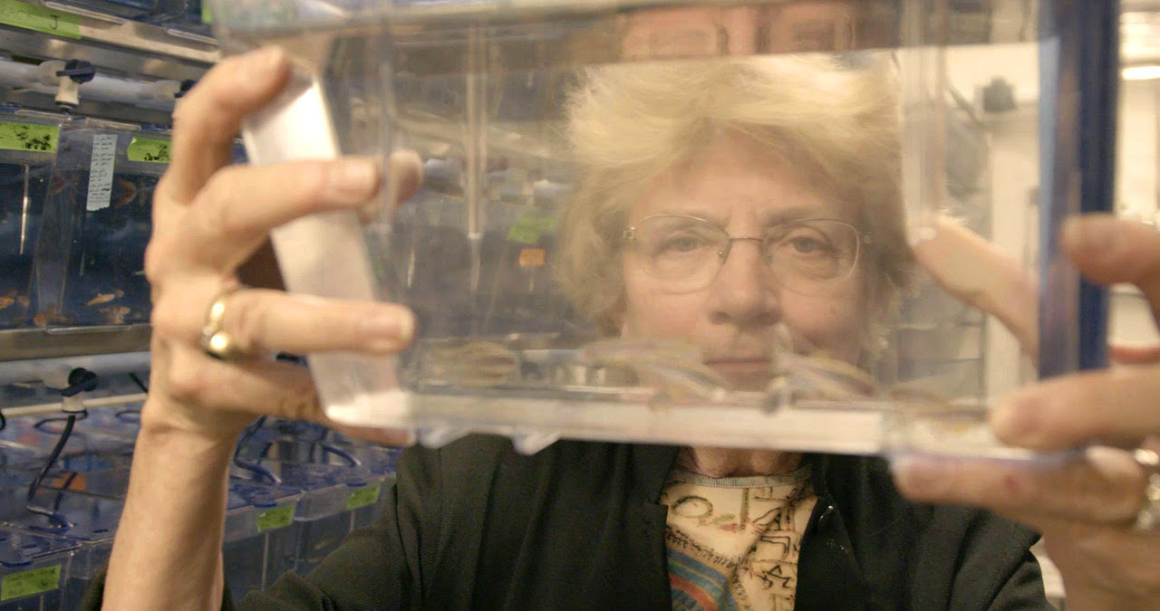 Sundance Institute Announces Expansion of Science Sandbox Nonfiction Initiative