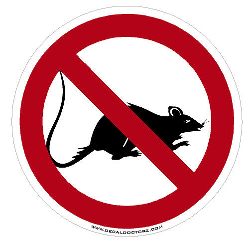 Image result for union rat clip art