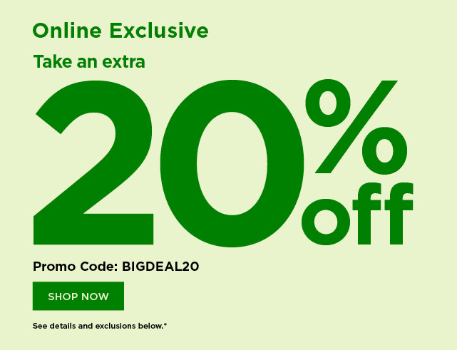 flash sale take 20% off using promo code BIGDEAL20. shop now.