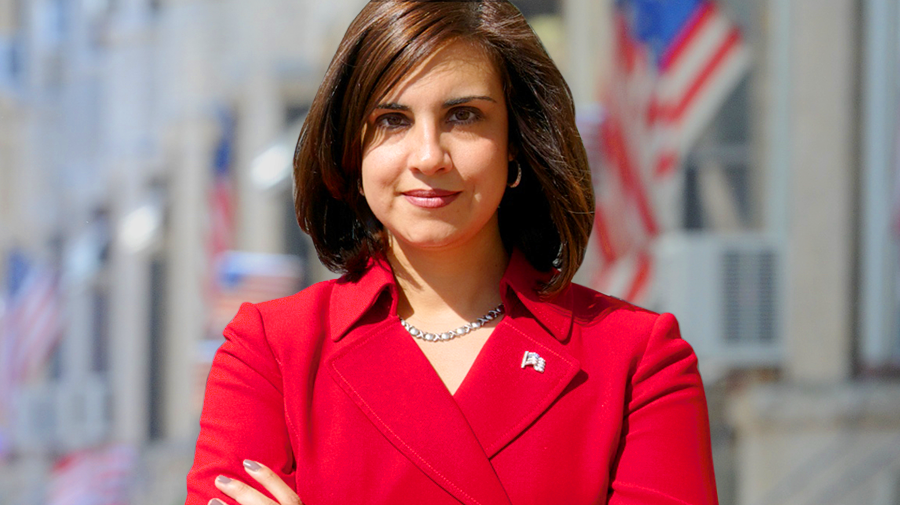 Image result for nicole malliotakis