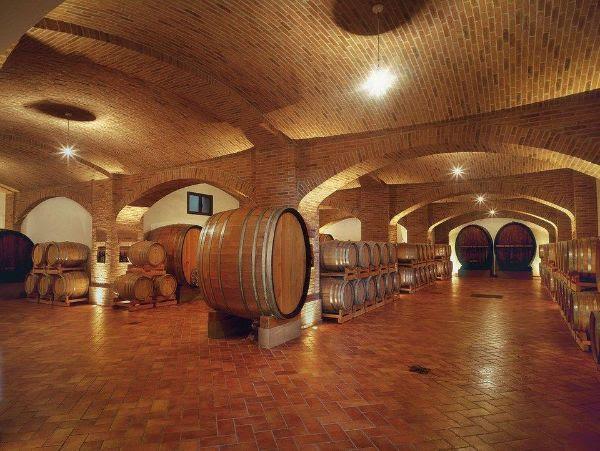 Aldo Manfredi Family Wine Cellar showing many oak barrels in the fermentation stage.