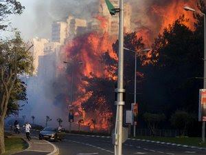 wildfires_haifa.jpg