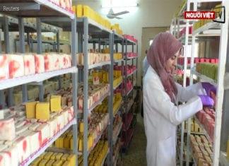 Video Nữ kĩ sư Iraq khởi nghiệp với xà bông thiên nhiên trị các bệnh về da