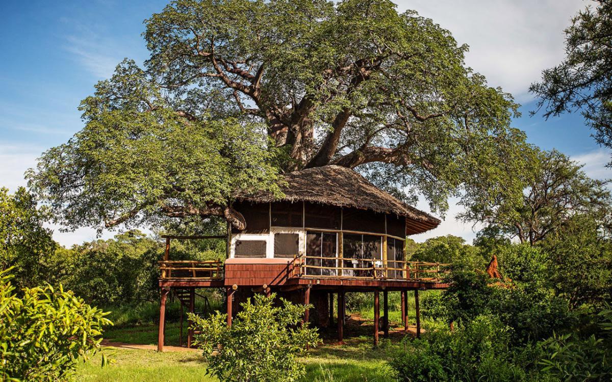 Tarangire-Treetops-exterior-view-of-Treehouse-Suite.jpg
