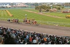 Racing at Golden Gate Fields