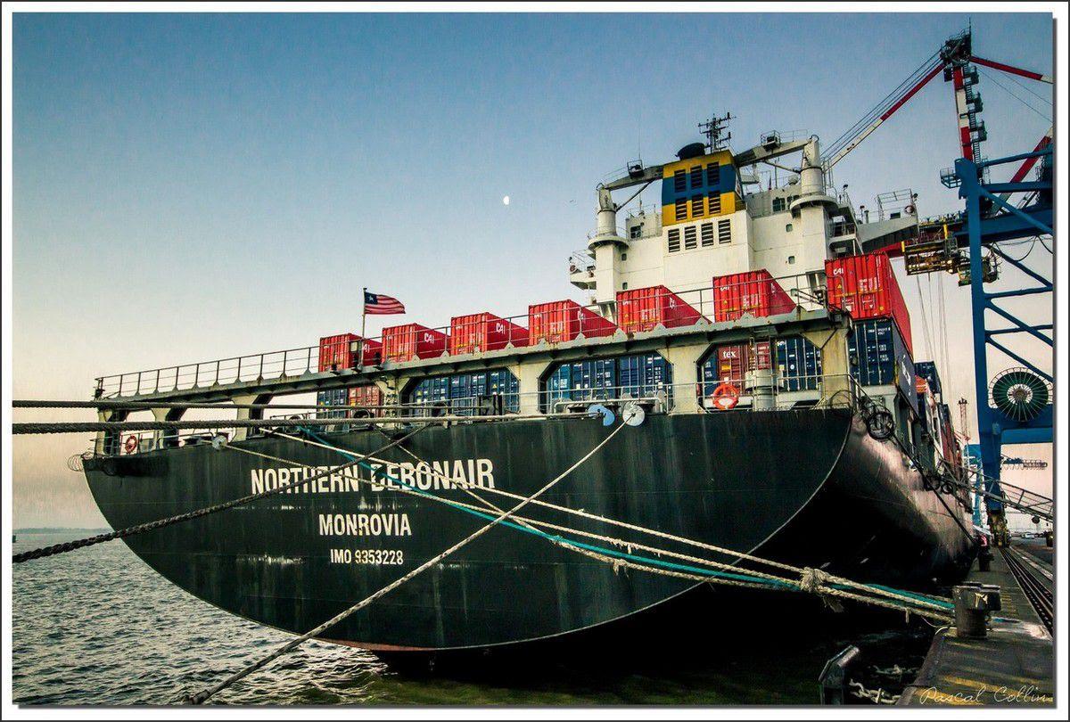 Infos - les Ports, et Infrastuctures maritimes Ob_461257_northern-debonair-t8989