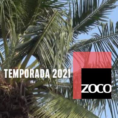 Temporada 2021 | Zoco