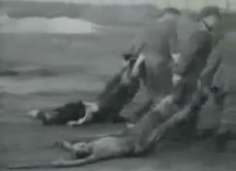 Dead                             bodies torn by SS men on the way to the mass                             grave 01, the clothes are NO striped                             uniforms of detainees in German ccs, and                             there are NO tattooed numbers, and there are                             NO remnants of earth on the bodies (23min.                             14sec.)