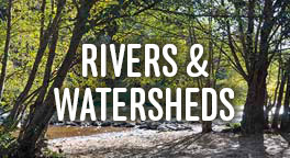 River and Watershed subhead