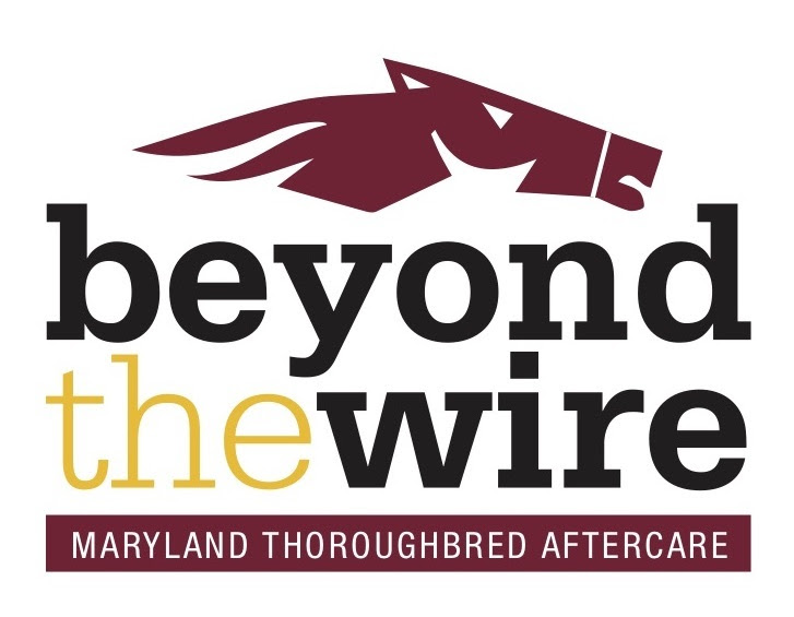 Beyond The Wire Logo - FINAL