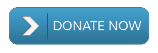 blue_donate_now.png