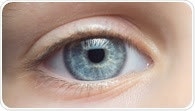 Study finds genetic treatment for inherited retinal disorder
