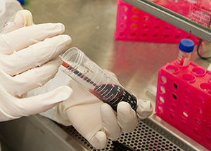 Gloved hands working with blood samples in lab (FDA: M. Ermarth)