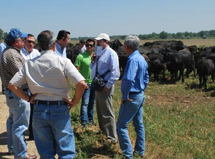 Congressional leaders from Mexico visit the Aristocrat Angus cattle operation near Platteville, Colorado, as part of a U.S. agricultural tour hosted by USMEF