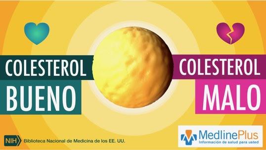 imagen del video de Medlineplus sobre colesterol