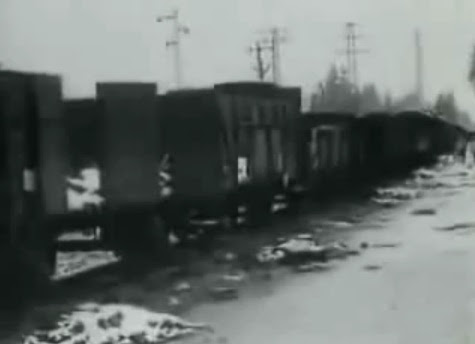 There was                 this train with detainees allegedly at the cc Dachau in                 February 1945 about (36min. 20sec.)