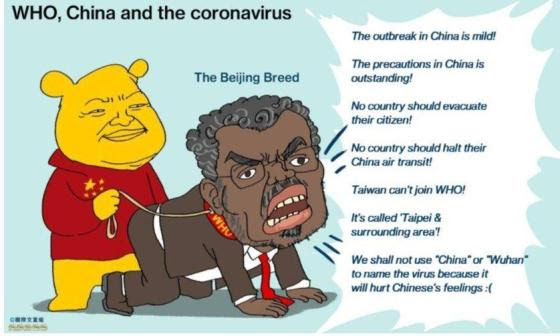 who china coronavirus