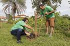 No Rally Ecológico foram plantadas 300 mudas de árvores pelos competidores (Chico Ferreira)