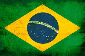 Image result for brazilian flag