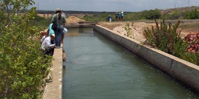 Canal é utilizado para irrigação no Vale do Açu