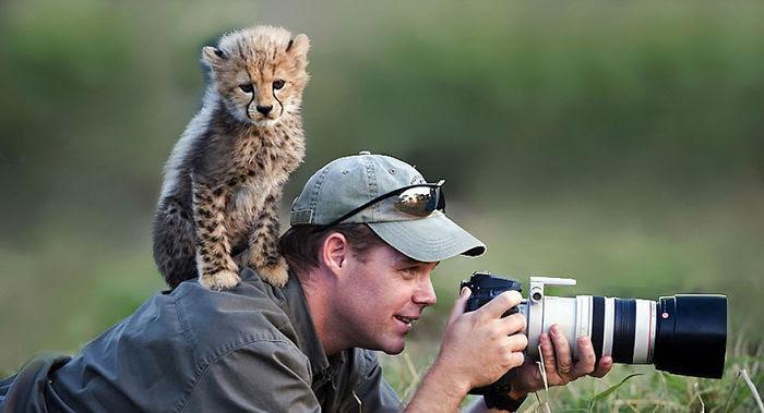 Les photographes animaliers... les animaux sentent leur bienveillance Nature-photographers-40__700