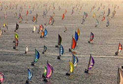 Parade of spinnakers in Round Island Race- Isle of Wight, England